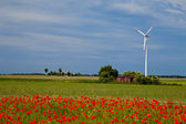 Poppy field with wind turbine — Stock Photo
