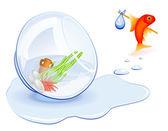 Goldfish Homeless — Stock Vector
