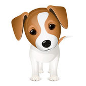 Little jack russel — Stock Vector
