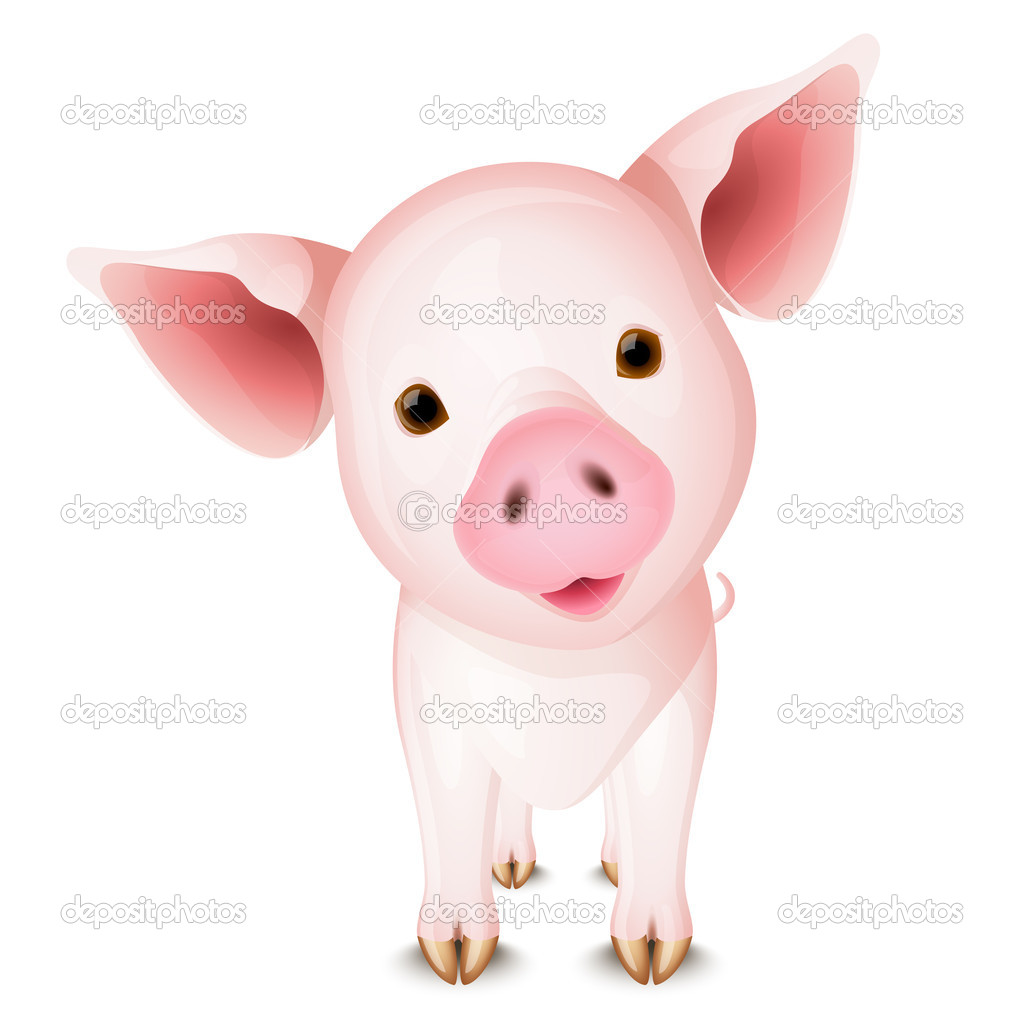 Little pink pig isolated on white background — Stock Vector #2855230
