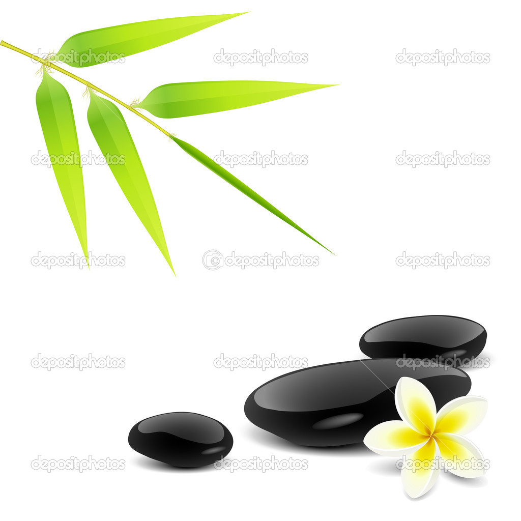 Zen theme with bamboo and black stones — Stock Vector #2855388
