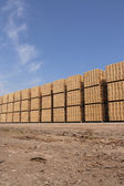 Wooden packing crates — Stock Photo