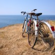 Stock Photo: Attached bicycles