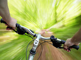 Mountain biking in the forest — Stock Photo