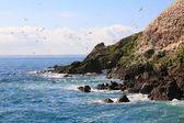 Rouzig island — Stock Photo