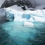 ledovec — Stock fotografie