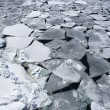 Sea ice on Antarctica — Stock Photo