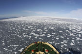 View of Antarctica — Stock Photo