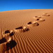 Footprints - Stock Photo