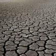 Dry Mud Field - Stock Photo