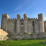 Portugal Castle — Stock Photo #4059990