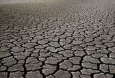 Dry Mud Field — Stock Photo