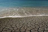 Water VS desert — Stock Photo