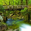 Beautiful river — Stockfoto