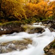 Stock Photo: Beautiful river