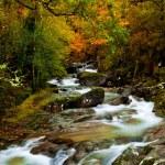 Beautiful river — Stock Photo