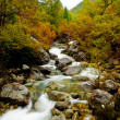 Mountain River — Stock Photo #4940436