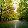 Beautiful road — Stock Photo #4940552