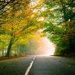 Stock Photo: Beautiful road