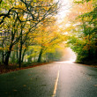 Beautiful road — Stock Photo