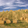 Hay bales standing ready to be collected - Stock Photo