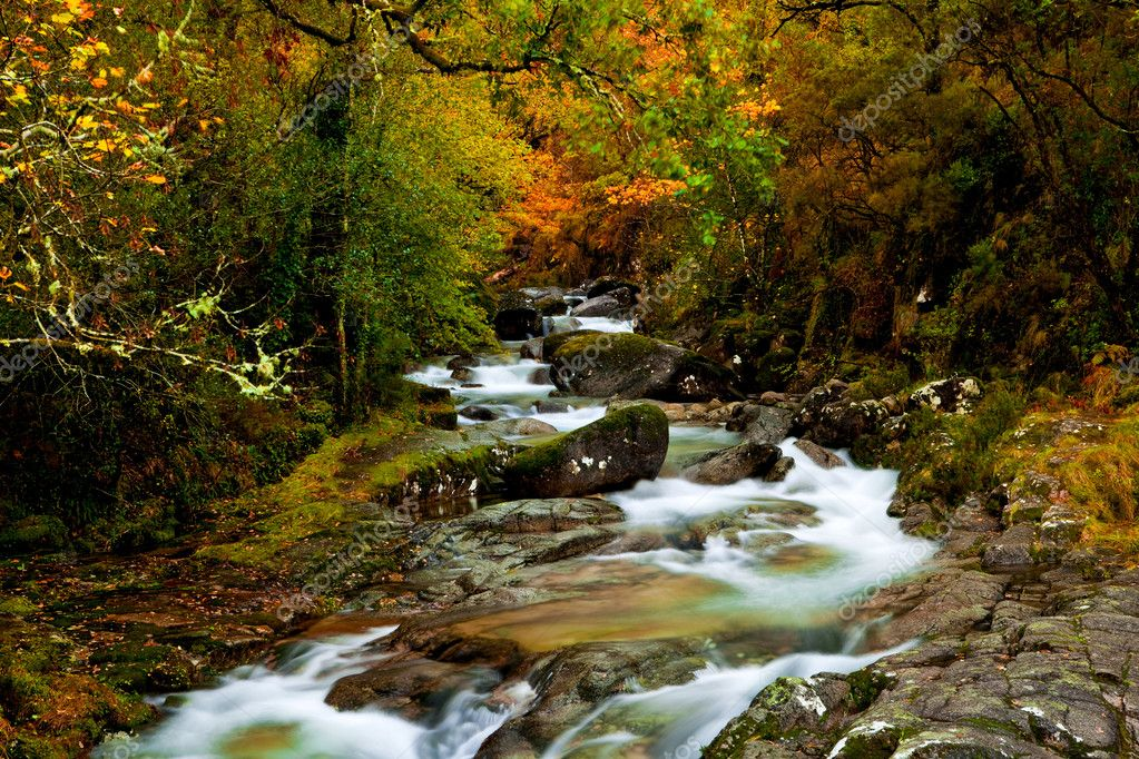 Beautiful river flowing by the forest during the Autumn season — Stock Photo #4940266