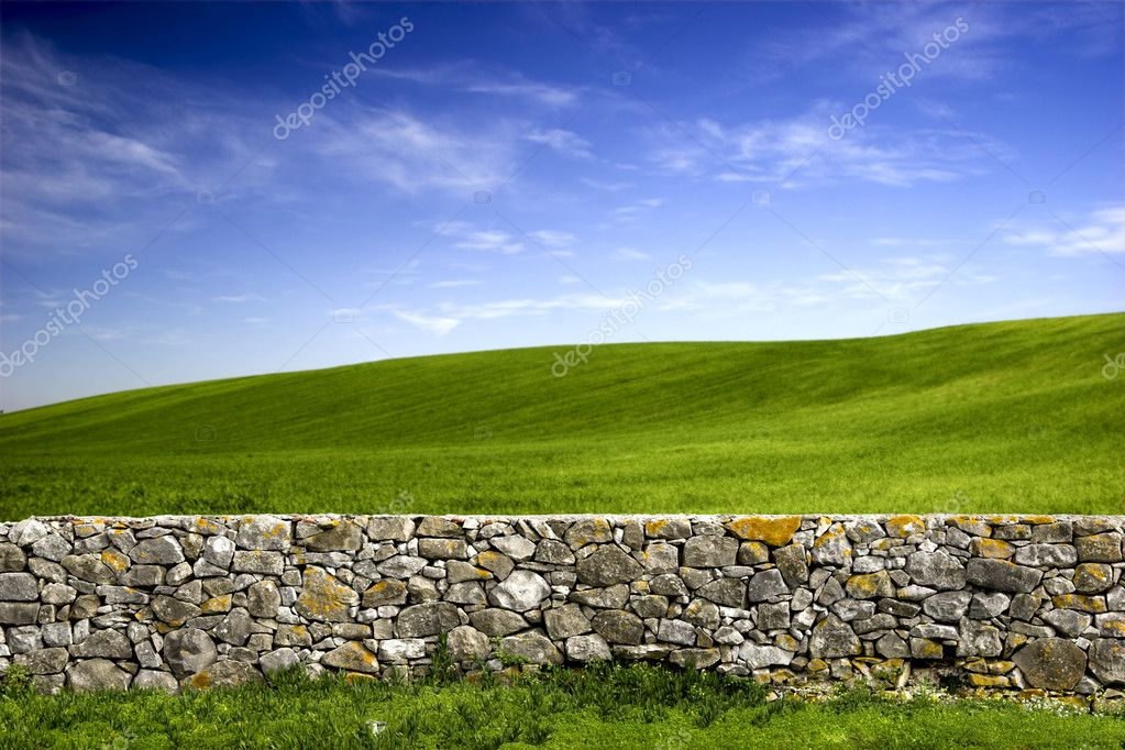 Beautiful green meadow with a old Stone wall — 图库照片 #4941273