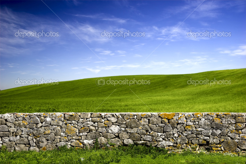 Beautiful green meadow with a old Stone wall — Stok fotoğraf #4941273