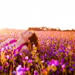 Relaxing on the meadow — Stock Photo #5066683