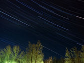 Star trails over winter forest — Stock Photo