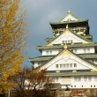 Osaka castle - Stock Photo