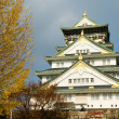 Royalty-Free Stock Photo: Osaka castle