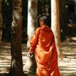 Monk — Stock Photo #3238210