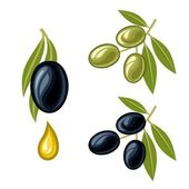 Olives — Stock Vector