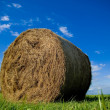 Bale of Straw — Stock Photo #2750237