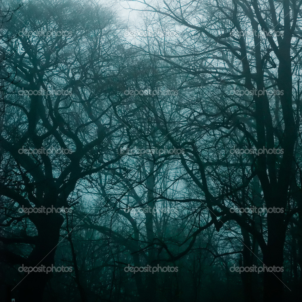 Haunted woods during a heavy thunderstorm. — Stock Photo #2951896