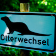 Otter Crossing — Stock Photo