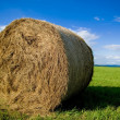 Bale of Straw — Stock Photo #2971216