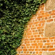 Royalty-Free Stock Photo: Splitted Wall