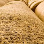 Bale of Straw — Stock Photo