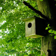 Birdhouse — Foto Stock #2989978