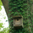 Birdhouse — Foto Stock #3064356
