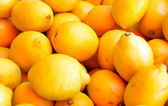 Citrons — Stock Photo