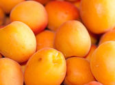 Mirabelles — Stock Photo