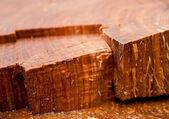 Gnarled Wood — Stock Photo