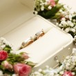 Stock Photo: Wedding rings and roses