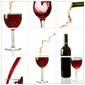 Wine collage — Stockfoto