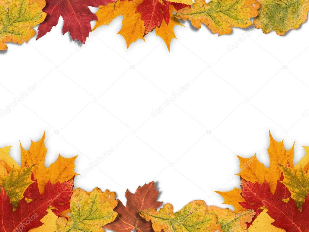 autumn frame made out of different autumn leaves photo by grafvision