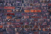 A dark red brick wall in the sunlight — Stock Photo