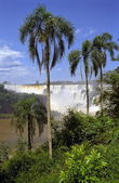 Las Cataratas del Iguazu — Stock Photo